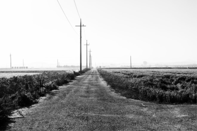 (8) 걷기와 사진.jpg